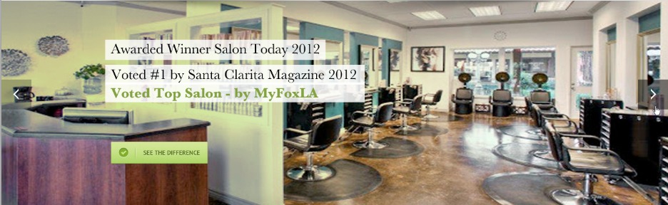 Top Salon Santa Clarita